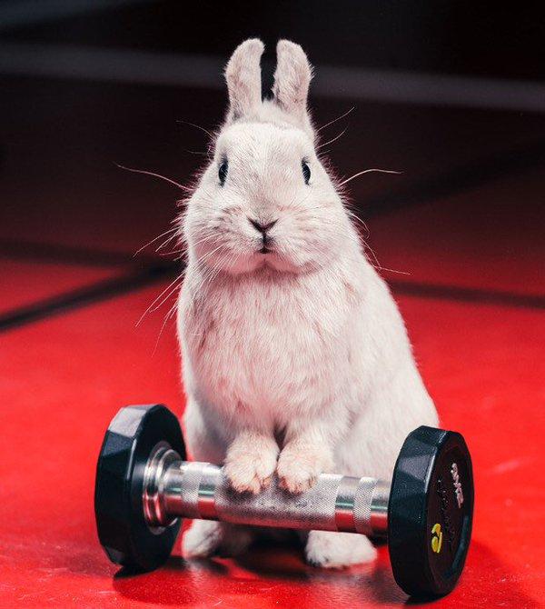 easter — Blog — CrossFit 1864